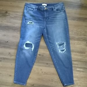 Lane Bryant distressed Jeans Size 16